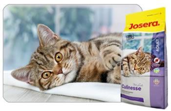 Корм для кошек 1st Choice - glavnoehvost