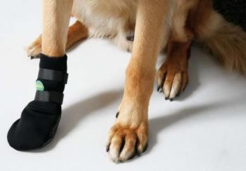 Обувь для собак на липучках